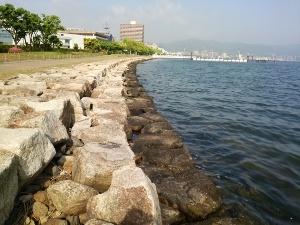 琵琶湖 バス 釣り 情報