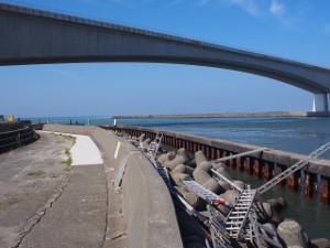 奥浜名湖 クロダイ 釣りポイント